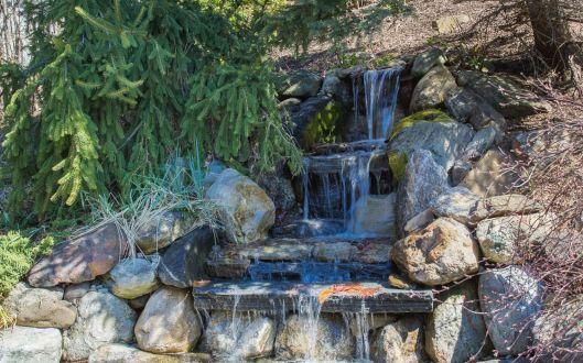 4 dixon road waterfall