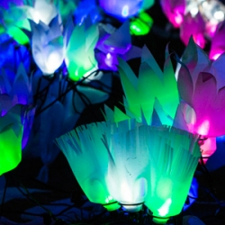 lightscapes